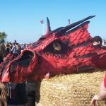 Cidre et Dragon 2015